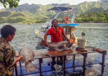 This Marquesan fisherman proudly shows off his catch, of which every piece this grouper will be consumed