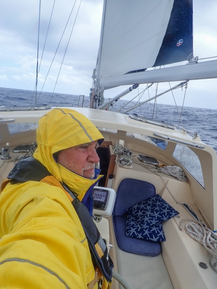 A series of gales originating in the Tasman Sea makes for challenging conditions on the final leg to New Zealand
