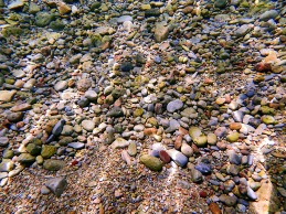 This is not an image of a beach. My camera is underwater pointed at a mosaic of pebbles on the bottom, six feet below the surface. The water clarity is otherworldly.