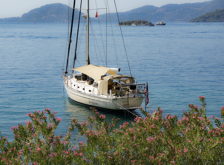 Oleander Bay2.sm